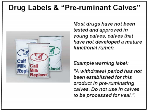 #3 Drugs in non ruminant calves