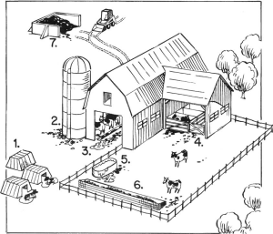farm overview cartoon graphic