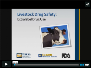 wifss-drug-safety-video-page-pic