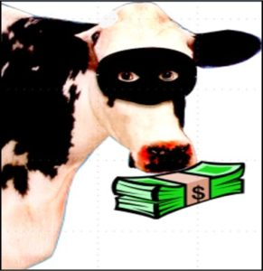 cow-robber-pic2