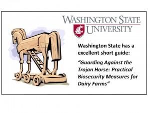9 trojan Horse