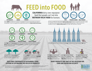 CDRF_Infographic