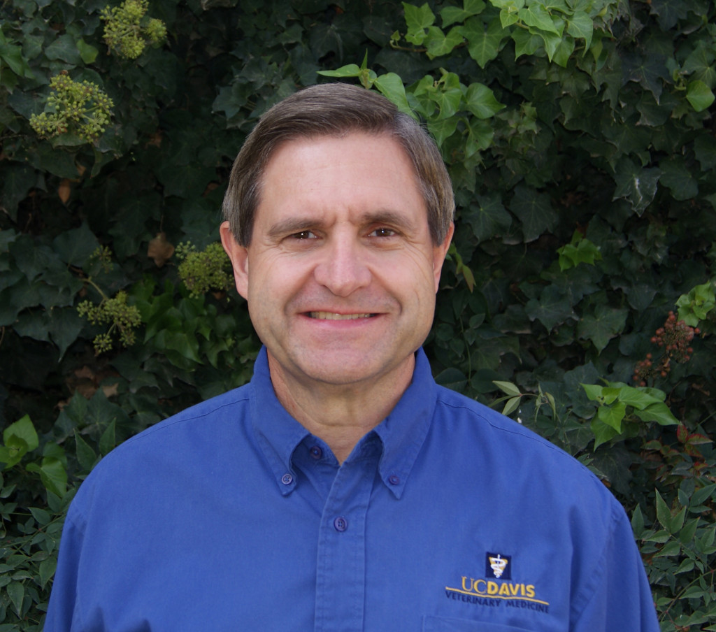 Dr. Terry Lehenbauer is Associate Professor and Director of the UC Davis Veterinary Medicine Teaching and Research Center (VMTRC) in Tulare.